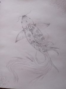A pencil drawing of a fish. Its tail is flowing
